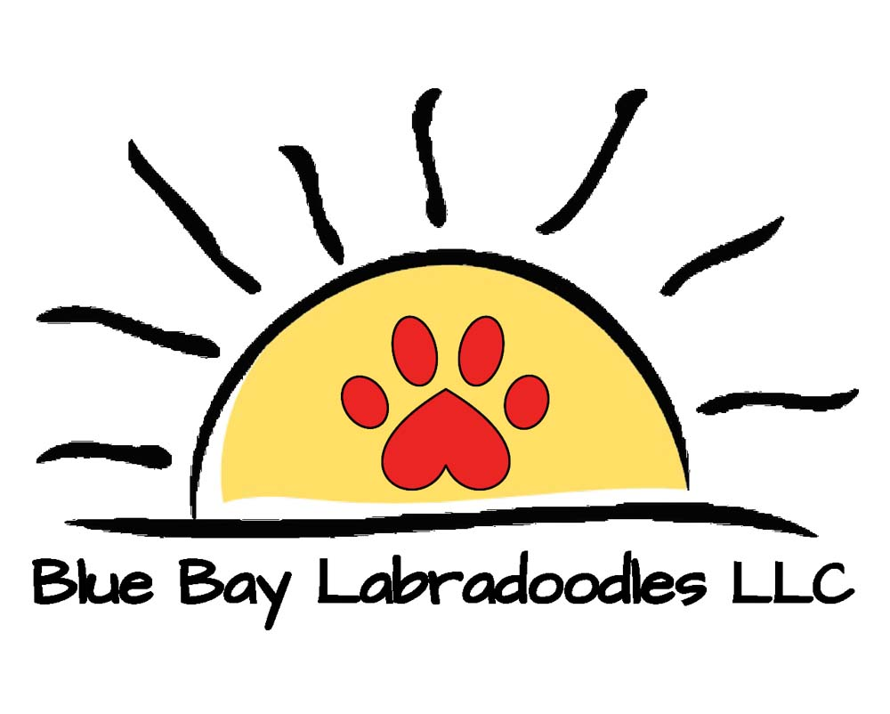 Blue Bay Labradoodles Logo