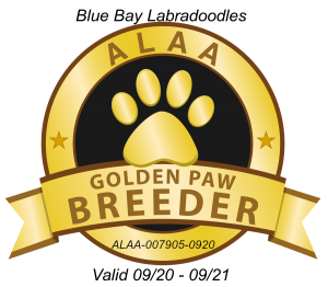 Blue Bay GOLDEN PAW BREEDER